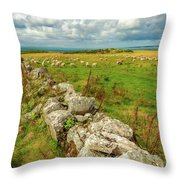 Sunny Meadow Sheep Throw Pillow