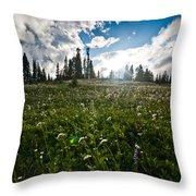 Sunny Meadows  Throw Pillow