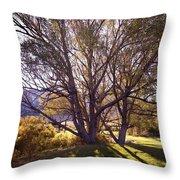 Sunny Mono Tree Throw Pillow