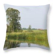Sunny Morning Throw Pillow