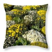 Sunny Mums Throw Pillow