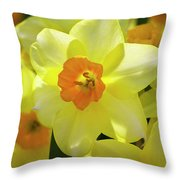 Sunny Narcissus Throw Pillow