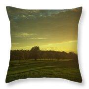 Sunny Netherlands Throw Pillow