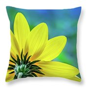 Sunny Outlook Throw Pillow