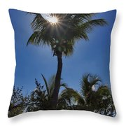 Sunny Palm Throw Pillow