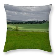 Sunny Patches On The Field. Throw Pillow