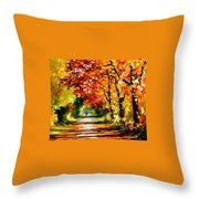 Sunny Path Throw Pillow