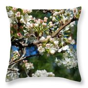 Sunny Pear Blossoms Throw Pillow