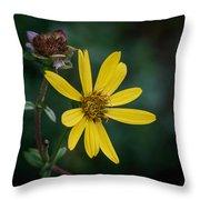 Sunny Petals Throw Pillow