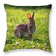 Sunny Bunny Throw Pillow