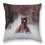 Sunny Running For The Barn. Throw Pillow