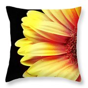 Sunny Side Over Easy Throw Pillow