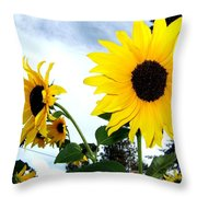 Sunny Slopes Throw Pillow