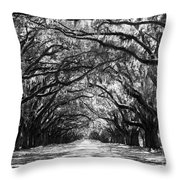 Sunny Southern Day - Black And White With Black Border Throw Pillow