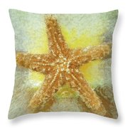 Sunny Star Throw Pillow