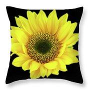 Sunny Sunflower Black Yellow Throw Pillow