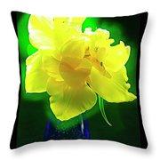 Sunny Tulip In Vase. Throw Pillow