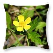 Sunny Yellow Buttercup Throw Pillow