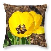 Sunny Yellow Tulips Throw Pillow