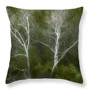 Sunol - Twins Throw Pillow