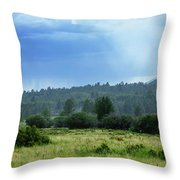 Sunray With Rain Throw Pillow