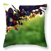 Sunrays With Blooms Throw Pillow