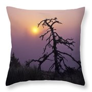 Sunrise And Fog Throw Pillow