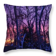 Sunrise And Snow Throw Pillow