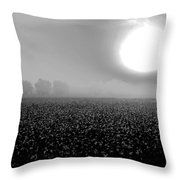 Sunrise And The Cotton Field Bw Throw Pillow by Michael Thomas