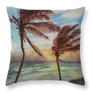 Sunrise At Cattlewash 4 Throw Pillow