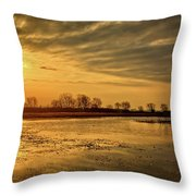 Sunrise At The Big Marsh Throw Pillow