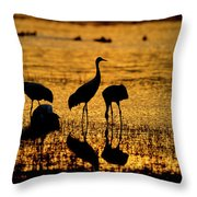 Sunrise At The Crane Pools Throw Pillow