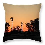 Sunrise At The Oasis Throw Pillow