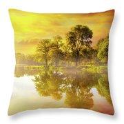 Sunrise At Trojan Park In Rainier Oregon Throw Pillow
