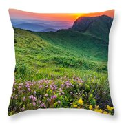 Sunrise Behind Goat Wall Throw Pillow