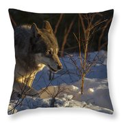 Sunrise Comes Throw Pillow