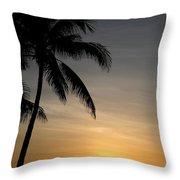 Sunrise In Florida / D Throw Pillow