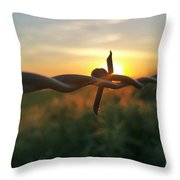 Sunrise In June  Throw Pillow