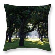 Sunrise In Pecan Grove Throw Pillow