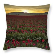 Sunrise In Skagit Valley Throw Pillow
