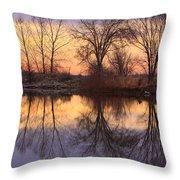 Sunrise Lake Reflections Throw Pillow