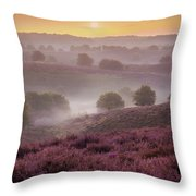 Sunrise Layers Throw Pillow