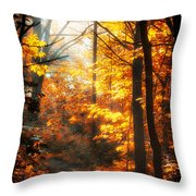 Sunrise Mist Through The Trees Throw Pillow