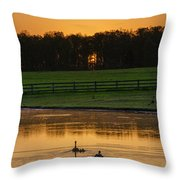 Sunrise On A Gettysburg Duck Pond Throw Pillow