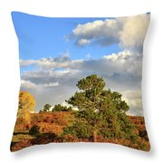 Sunrise On County Road 58 Throw Pillow
