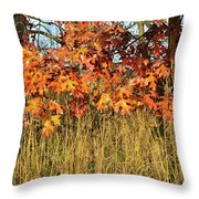 Sunrise On Oaks In Glacial Park Throw Pillow