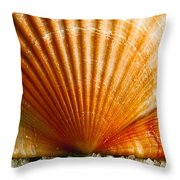 Sunrise On Shell Throw Pillow