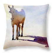 Sunrise On The Circle H Throw Pillow