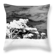 Sunrise Over Fort Salonga B W In Negative Throw Pillow