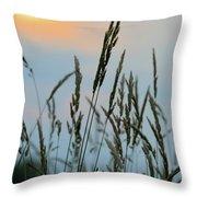 Sunrise Over Grass Throw Pillow